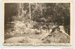 carte-postale-ancienne-or-et-compagnie-4